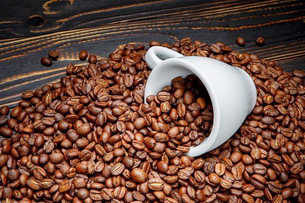 دراسة جدوى قهوة مختصة